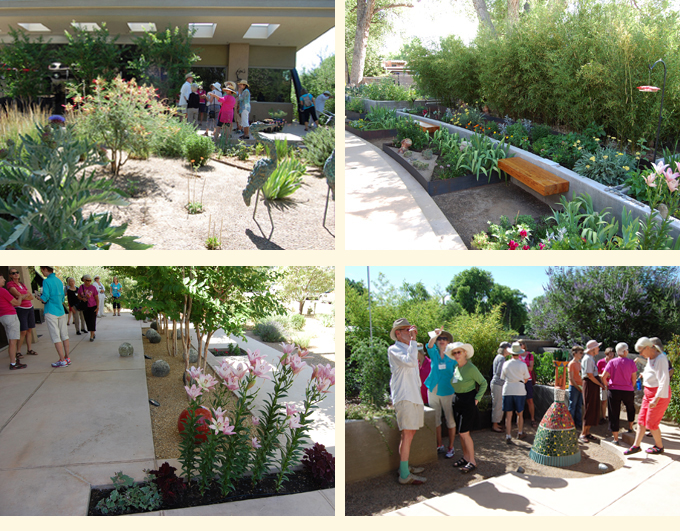 Suzy Explained To The Xeric Garden Club Members How To Create A Colorful  Early To Late Spring Bulb Garden.