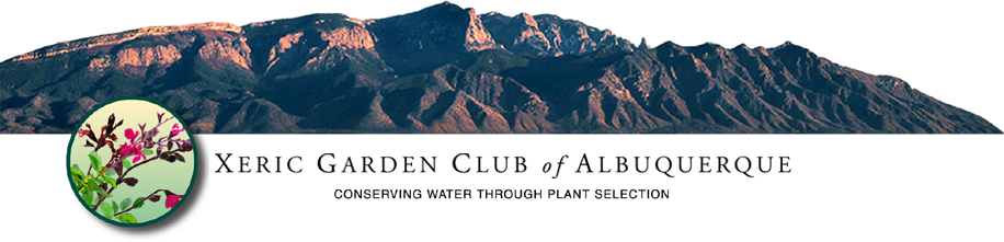 The Xeric Garden Club Of Albuquerque Is A Non Profit Organization And A  Member Of The Council Of Albuquerque Garden Clubs, Which Owns And Operates  The ...